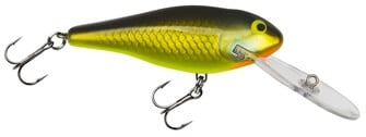 Bagley Deep-diving-shad-G-Plastic
