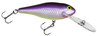 Bagley Deep-diving-shad-PPL-Plastic