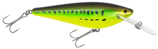 Bagley Monster-shad-MSD-BB
