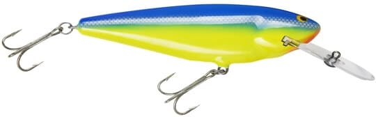 Bagley Monster-shad-MSD-PRT2