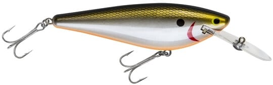 Bagley Monster-shad-MSD-TSD