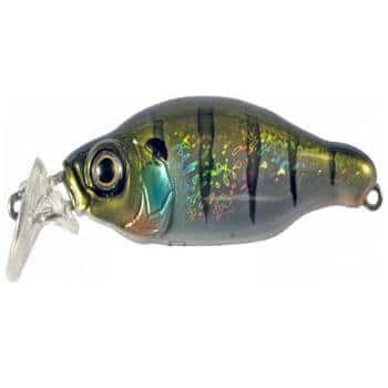 Gan Craft Bacra-SR_Rainbow Gill