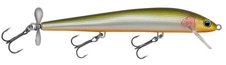 Bagley-Spintail-Tennessee-Shad-TSD