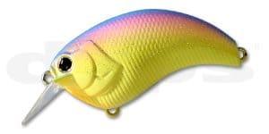 Deps Evoke-Rainbow