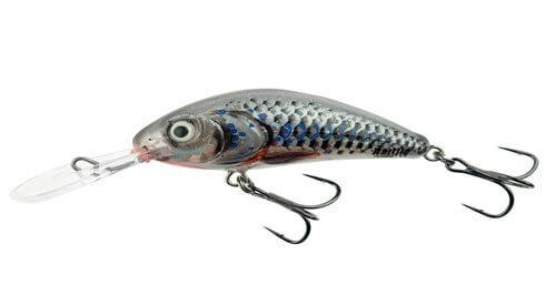 Salmo Rattlin Hornet-SHS-Silver Holographic Shad
