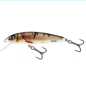 Salmo Minnow-WOD-Wounded Dace