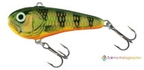 Salmo Chubby Darter-GHP-Gold Hot Parch
