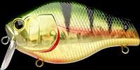 Lucky Craft Bullfish color-BULL-884-AGNPC-Aurora Gold Northern Perch