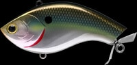 Twisted Rosie color-TWRS-360-BTSD-Bullet Shad