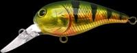 Lucky Craft Bevy Crank color-884-AGNPC-Aurora Gold Northern Perch