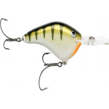 Rapala dt dives to color-yp