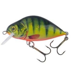 Dorado Lake-color-yp