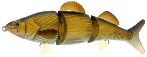 River 2 Sea BossyMarck-color-Golden Shiner