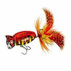 Arbogast Hula Popper 2.0 Color Coach Hog