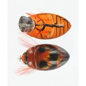 Micro Crankbaits River 2 Sea Gt Bug Color gtb 01