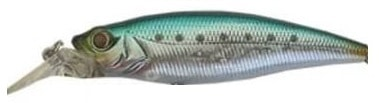 Owner Cultiva Savoy Shad Color Blue Back-15