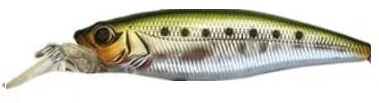 Owner Cultiva Savoy Shad Color Green Back-22