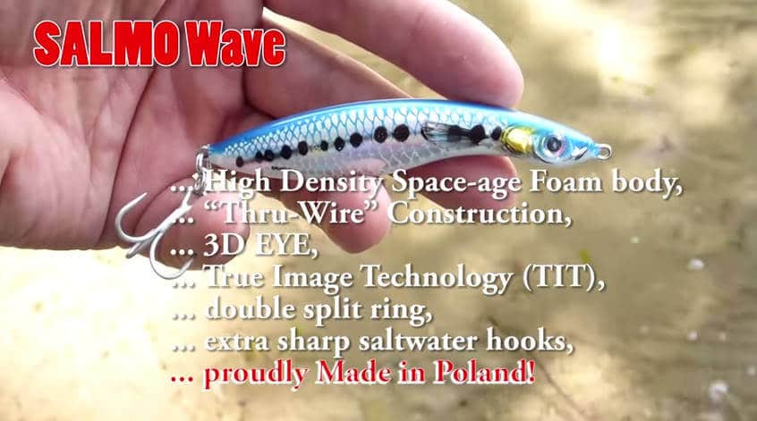 Salmo Wave Features