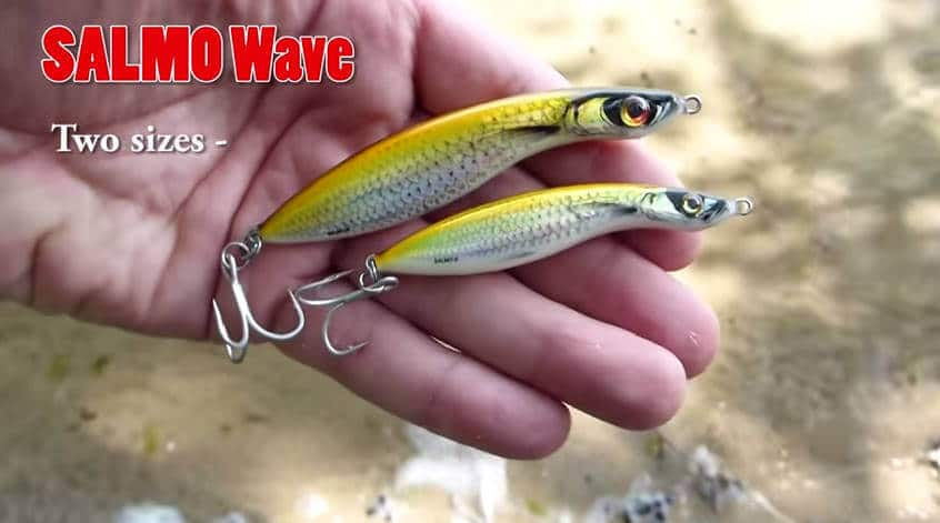 Salmo Wave Two sizes
