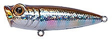 Topwater Lure Owner Cultiva Gobo Popper Color Brown Trout-11