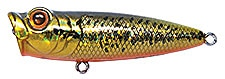 Topwater Lure Owner Cultiva Gobo Popper Color Golden Bass-51