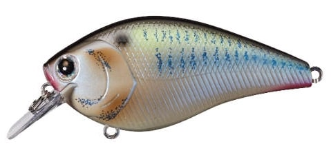 Lucky Craft LC Silent Squarebill Color Live Threadfin Shad-425