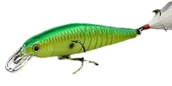 Lucky Craft Live Pointer Color Peacock-111