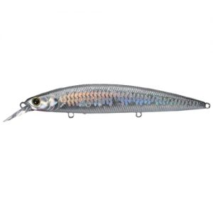Lucky Craft Surf Pointer Color MS Anchovy 765