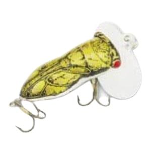 Arbogast Hocus Locust Yellow Insect